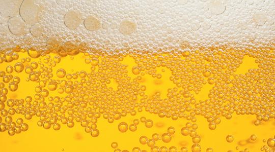 Beer 540×300