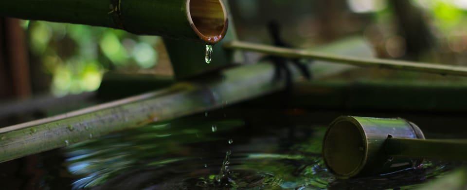 bambu_temizu_mr