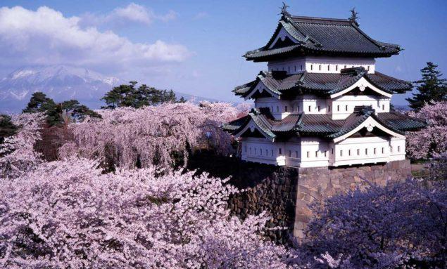 Hirosakiborgen omgiven av blommande körsbär