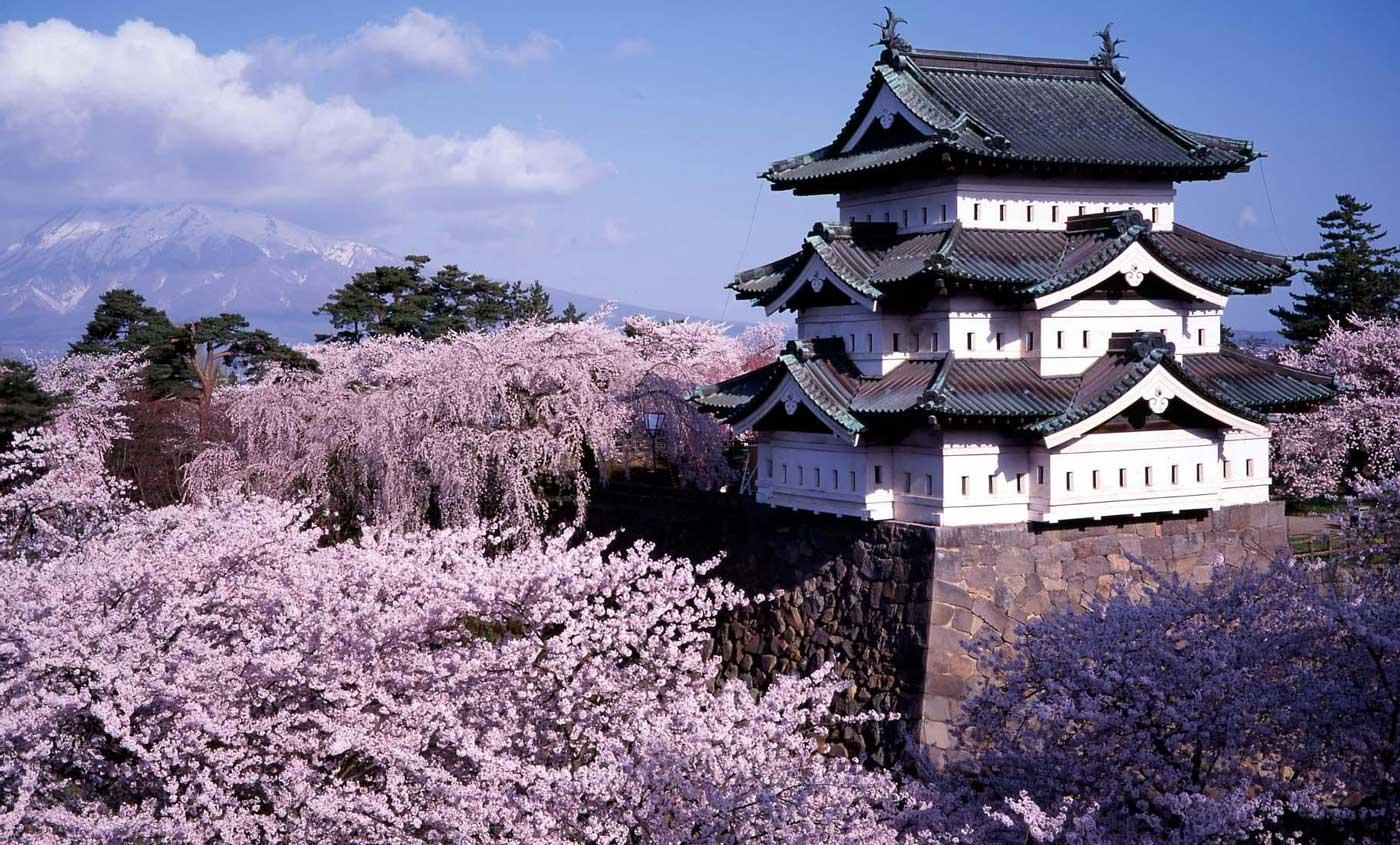 Inför Japanresan